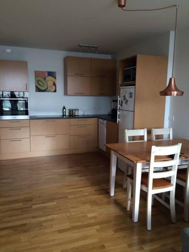Reykjavik comfy apartment