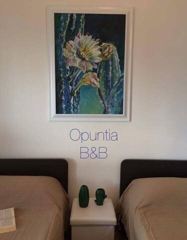 B&B Opuntia food and relax - Provincia di Caserta - Bed & Breakfast