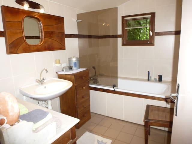 La salle d'eau avec baignoire et douche sur la baignoire