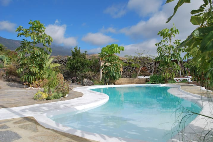 Enjoy a refreshing swim in the shared salt water pool!
