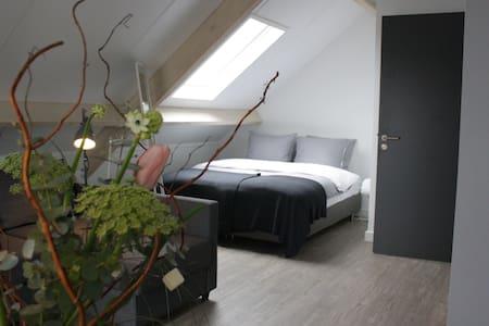 Nieuwe B&B met zwembad, sauna Bedstay kamer - Dalen - Apartment