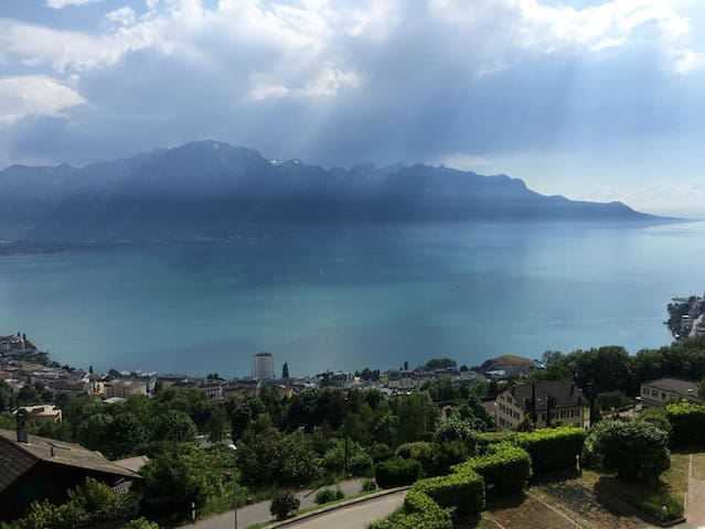 Swiss Hill Panorama (Netflix and Air Conditioner) - Montreux