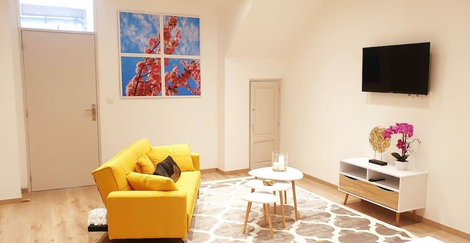 Maison Cosy/Moderne Hyper centre Saint-Affrique