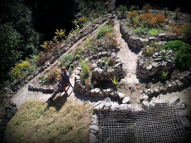 Tieedi Herb Garden Dwelling