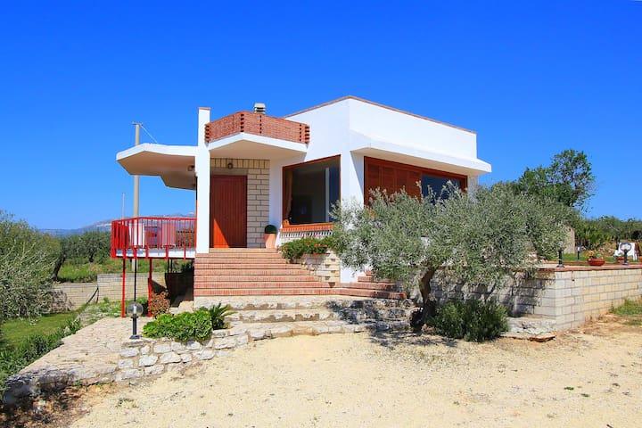 Splendida villa con grande giardino - Ribera - Villa