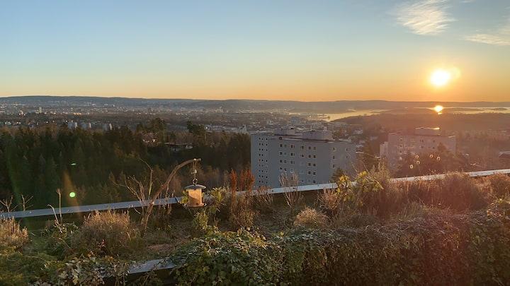 Veldig bra egnet for 3 par på Oslotur