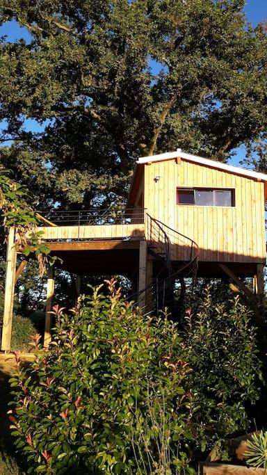 la cabane perch e du faucon cabanes dans les arbres louer fr chou fr chet languedoc. Black Bedroom Furniture Sets. Home Design Ideas