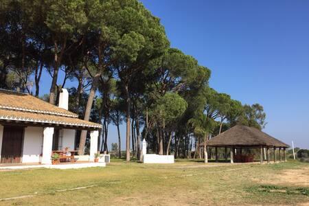 Casa de campo. Almonte-Doñana - Almonte - Rumah
