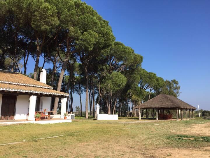 Casa de campo. Almonte-Doñana