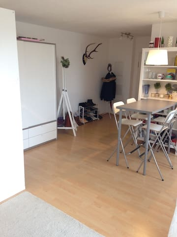 Generous 1R Apprtmnt in the Center - Leipzig - Apartment