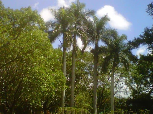 Magnifica casa en Cocoyoc - Cocoyoc - Casa