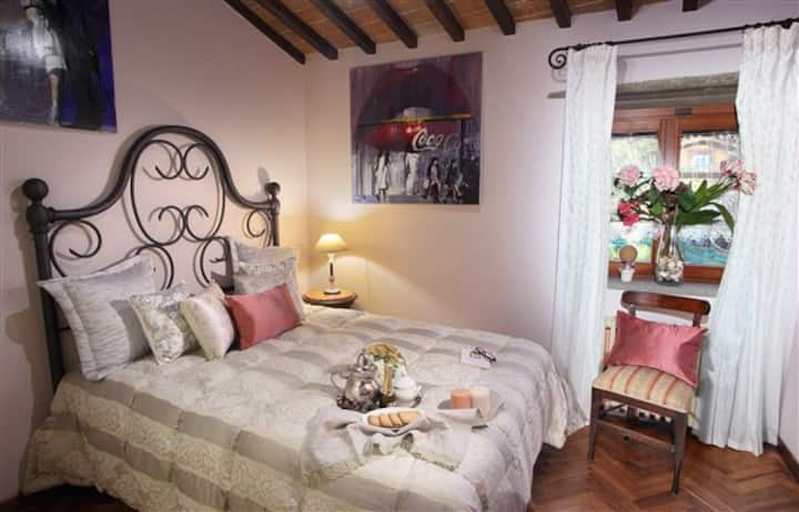 Camera degli olive