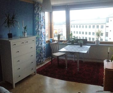 Large room 500 m from Avenyn