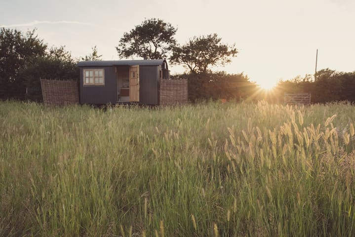 Traditional Shepherds Hut at Elmley Nature Reserve