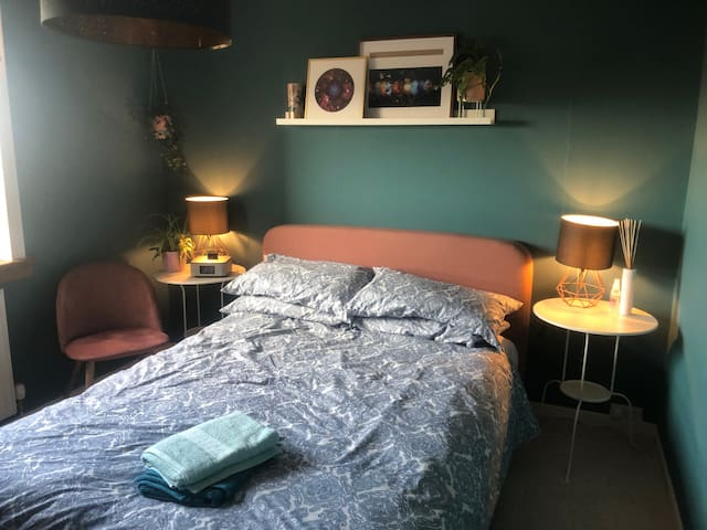 Cosy room near town with two cats