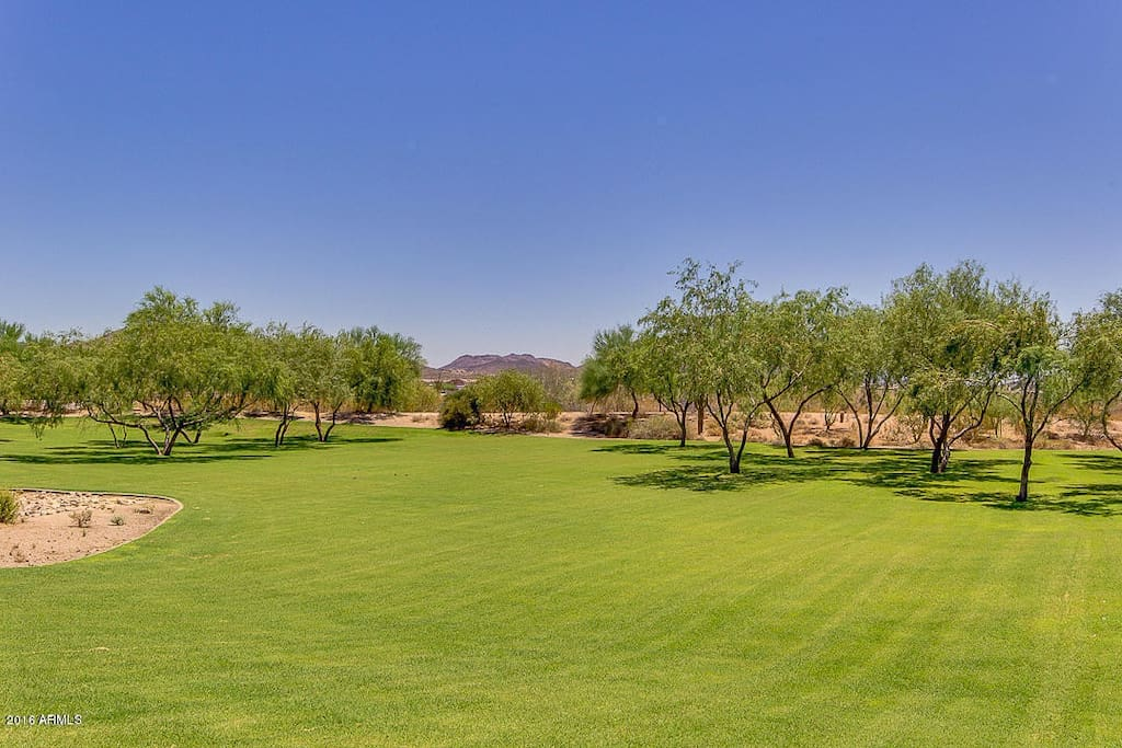 Plenty of desert PLUS green space, including lots of walking and hiking trails nearby.