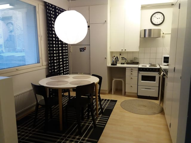 An exclusive studio apartment 36 m2,in Rovaniemi - Rovaniemi - Apartment
