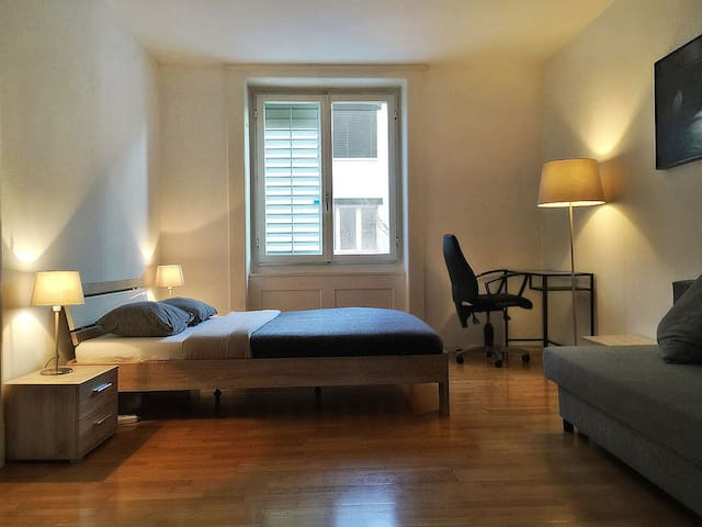 Gemütliche 3-Zimmerwohnung  und 2 Balkonen - Zürich