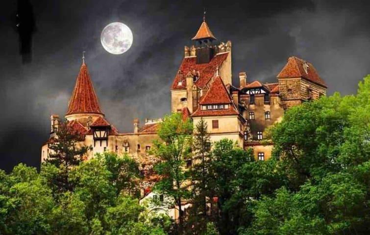 Dracula's castle, English/Japanese speaker owner!
