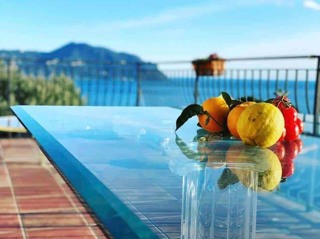 The Artist's Terrace