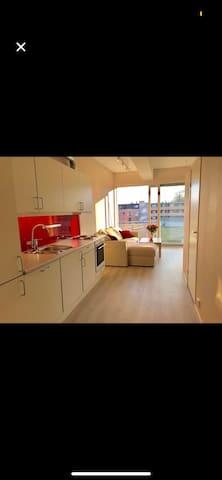 SANDNES SENTRUM - Nyoppusset leilighet