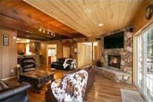 wood burning gas fireplace