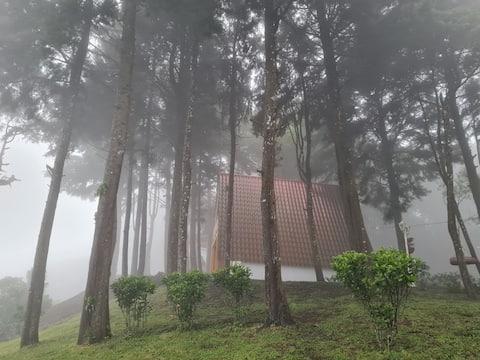 La Cumbre, Cabaña 4 Uitsili (Colibrí)