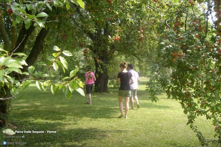 Atmosfera PANNA in magico parco. - Bed & Breakfast