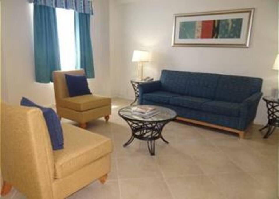 Living room area with a sofa sleeper
