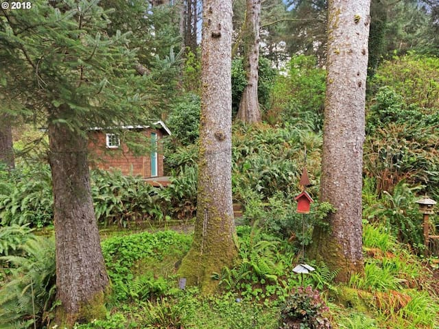 Landscaped backyard has classic Oregon forest feel, with extra privacy as it backs into a state park.
