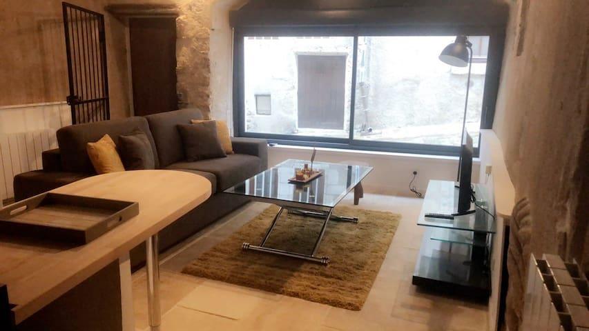 Plein centre appartement du XII Ème siècle