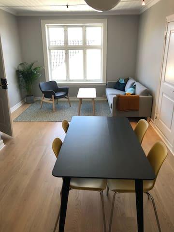 Nyoppusset leilighet midt i Grimstad sentrum