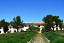 The hamlet Benali