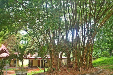 Room type: Entire home/apt Bed type: Real Bed Property type: Bungalow Accommodates: 2 Bedrooms: 1 Bathrooms: 1