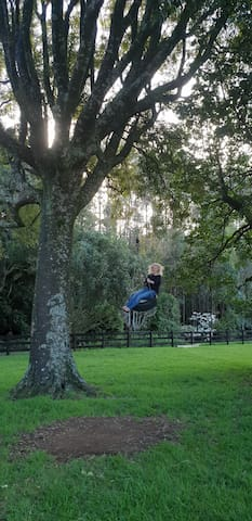 Try out our epic tyre swing - fun for all ages!