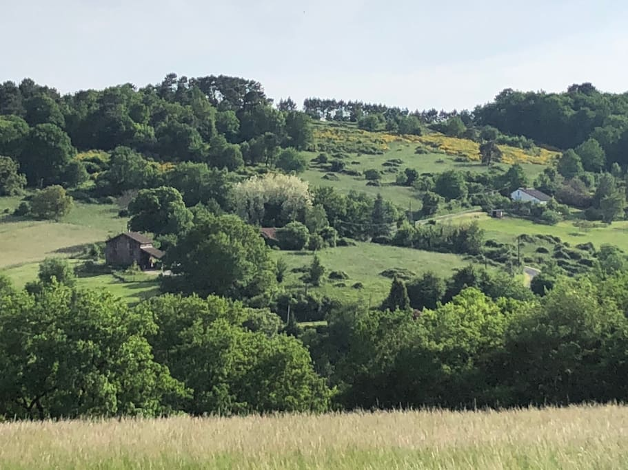 vue depuis la maison