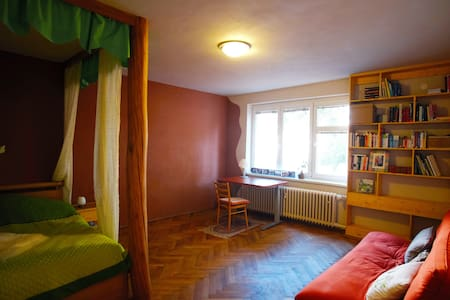 Lovely Room in the City Center - Ostrawa - Apartament