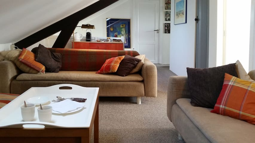 Private room, luxurious floor, Central The Hague