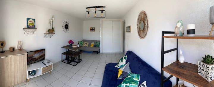 Studio avec terrasse plein sud à 20m de la plage