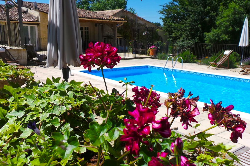 Securely fenced HEATED pool Area. Loungers with cushions & Deck chairs