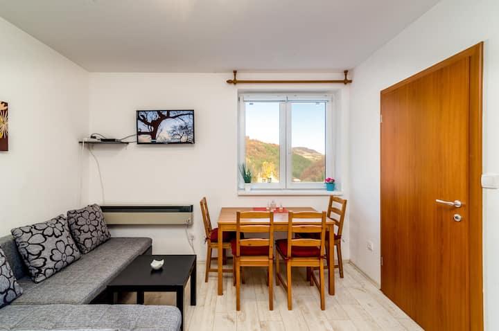 Ceo apartman Kopaonik, Vila Vedrana Brzece ,app.2