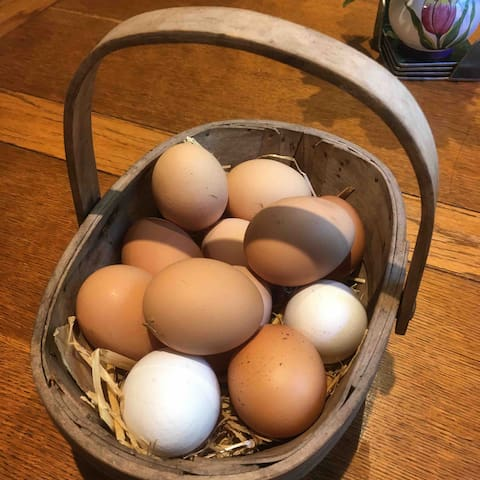 We sell our own eggs.