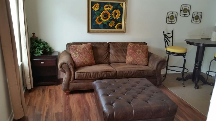 CONVENIENT & COZY HOME BY USF, BUSH GARDEN, MOSI - Tampa - Appartement