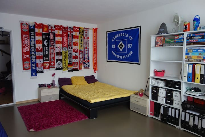 Spacious room - 15 min from Zurich city centre! - Dietikon - Pis