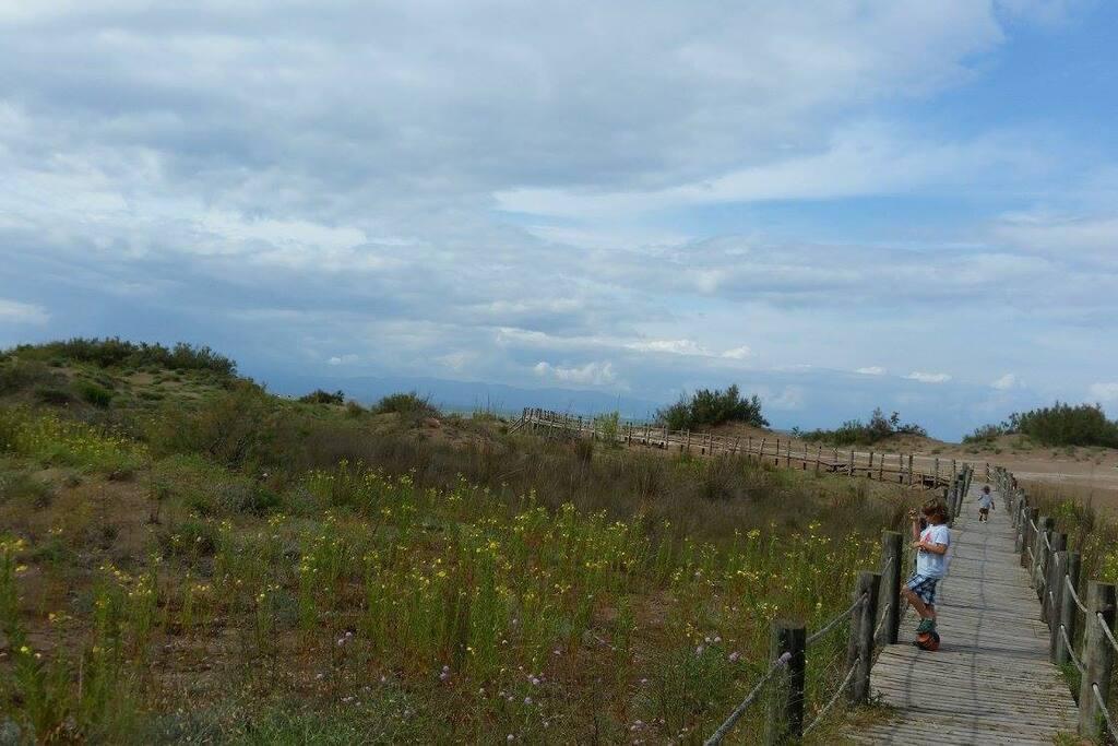 Playa Riumar