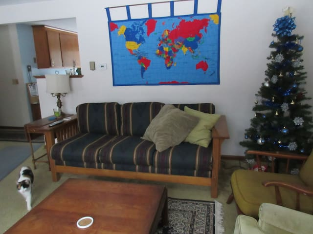 Lucy (cat from Turkey) may visit you in the living room.