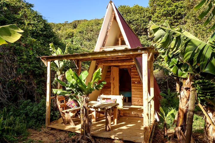 BANANA ECO CAMP