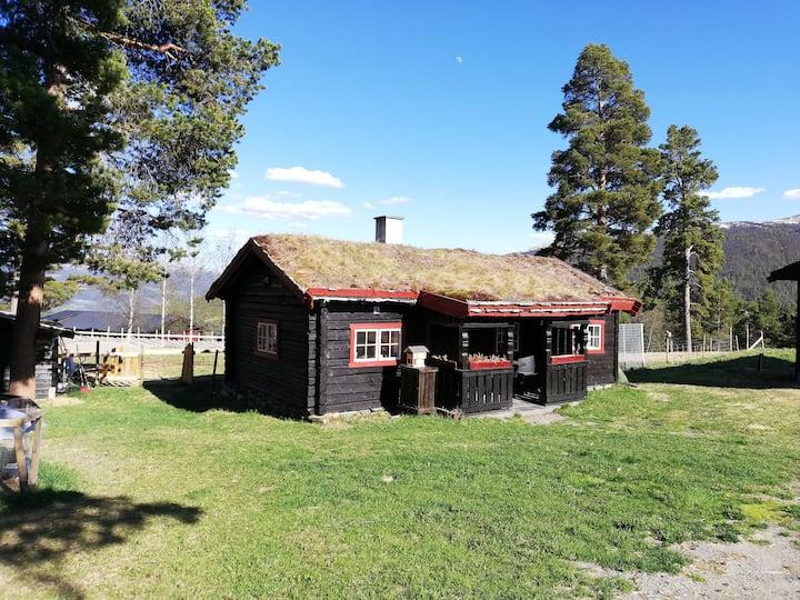 Koselig hytte mellom Rondane og Jotunheimen!
