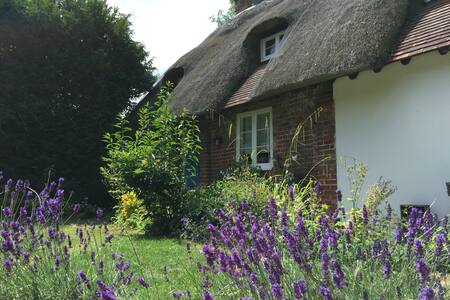 Listed Cottage, Winchester, double room, parking