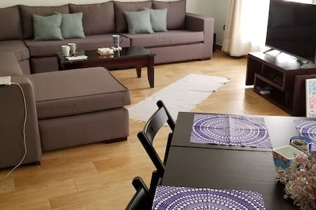 New Furnished Apartment in Distinguished District